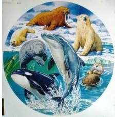 Marine Mammals round 500 piece puzzle